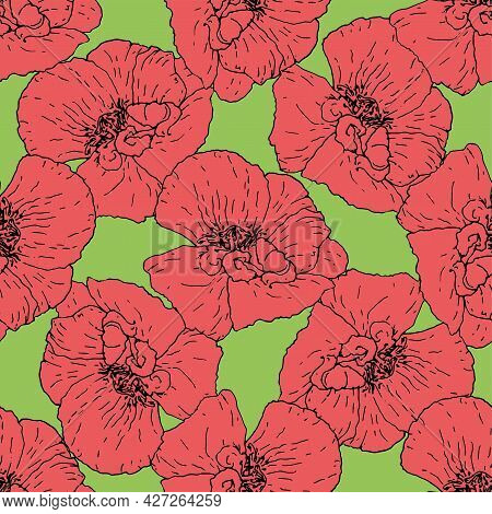 Vector Seamless Pattern Made Of Red Poppy. A Pattern Of A Painted Poppy Flower In A Sketch Style Of