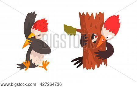 Funny Woodpecker Bird Set, Woodland Bright Woodpecker Cardinal Bird Cartoon Character Vector Illustr