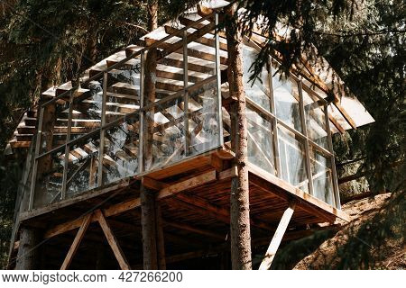 Exterior Of The Tree House. Wooden Veranda With Glass Walls In The Forest. Treehouse Outdoors, Sunny