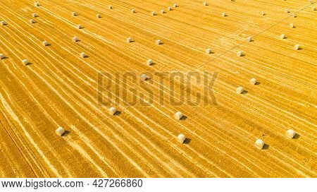 Above View Of Agricultural Field With Round Bales Of Straw, After Harvesting Cereal Plant Are Prepar