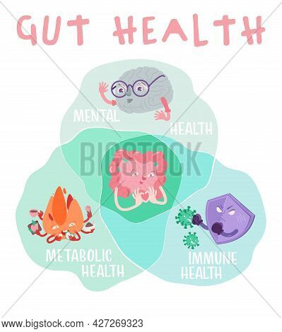 Why Gut Health Matters. Vertical Poster. Medical Infographic.