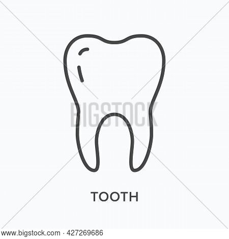Tooth Flat Line Icon. Vector Outline Illustration Of Dent. Black Thin Linear Pictogram For Stomatolo