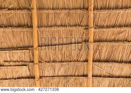 Asian Dry Grass Roof Pattern Background. Straw Roof With Bamboo Beam Structure