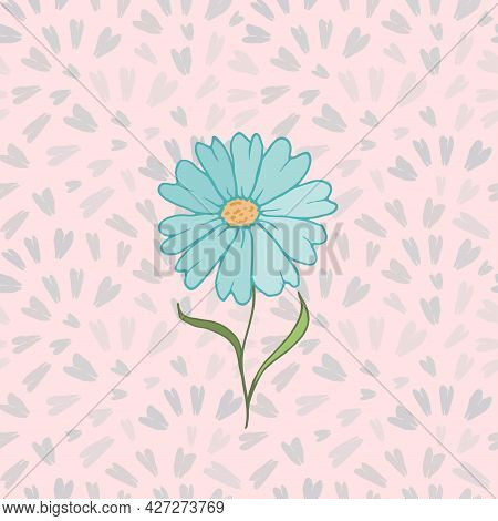 Vector Drawing Daisy Flower, Floral Element, Hand Drawn Botanical Illustration. Chamomile Design For