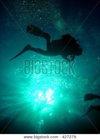 Diver In Silhouette