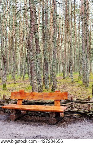 Wooden Bench Made Of Logs And Placed In The Forest