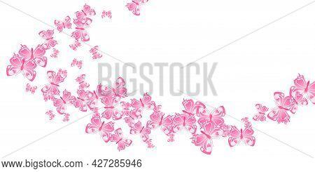 Romantic Pink Butterflies Flying Vector Wallpaper. Summer Colorful Moths. Decorative Butterflies Fly