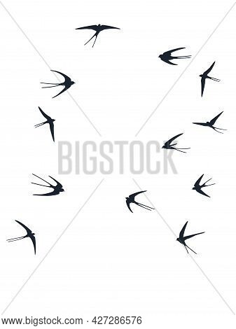 Flying Martlet Birds Silhouettes Vector Illustration. Nomadic Martlets Bevy Isolated On White. Free