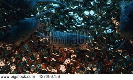 Top View Of Little Mice On Golden Sequins, Glitter Or Coins. Glamorous Mouse, Wealth Concept, Unsani