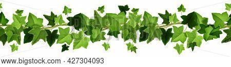 Ivy Plant Vector Green Seamless Border, Climbing Vine Leaf Frame, Floral Liana Creeper Illustration