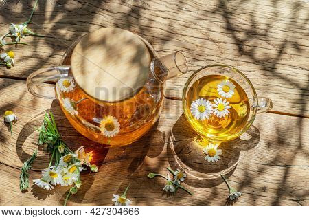 Glass of herbal chamomile tea and chamomile flowers near teapot. Top view.