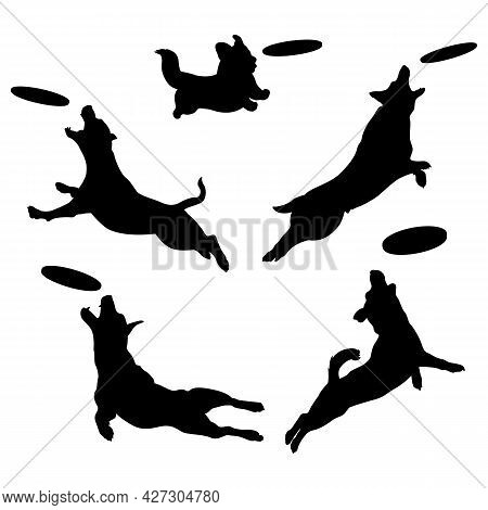 Silhouettes Of Dogs Playing Frisbee. Dog Jumping In The Air Grabs A Frisbee. Vector Isolated Illustr
