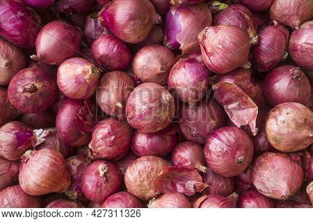Allium Cepa - Organic Onions In The Traditional Colombian Market