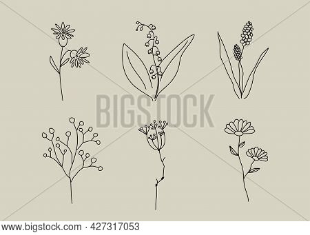 Wild Flower Icon. Natural Cosmetics Logo Element. Beauty Salon Isolated Sign. Nature Symbol. Vector
