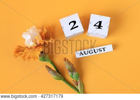 Calendar For August 24 : The Name Of The Month Of August In English, Cubes With The Number 24, Yello