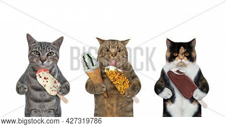 Three Cats Are Eating Ice Cream. White Background. Isolated.