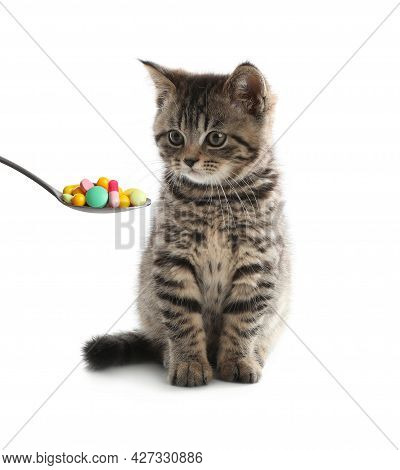 Cute Grey Tabby Kitten And Spoon Full Of Different Pills On White Background. Vitamins For Animal