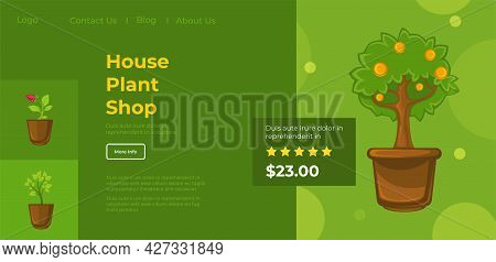 House Plant Shop, Products With Reviews And Info