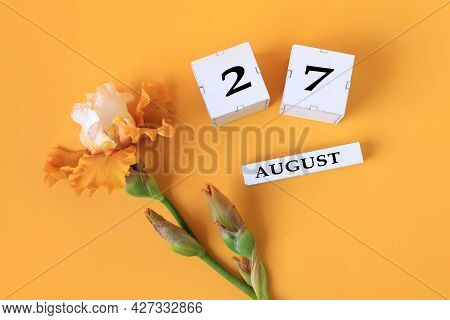 Calendar For August 27 : The Name Of The Month Of August In English, Cubes With The Number 27, Yello