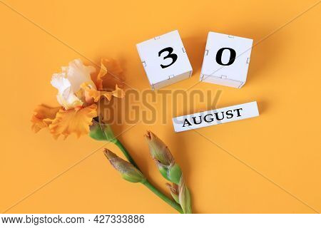 Calendar For August 30 : The Name Of The Month Of August In English, Cubes With The Number 30, Yello