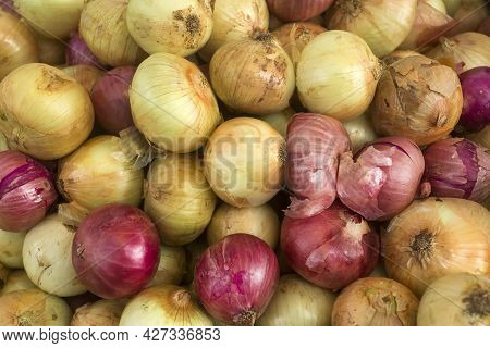 Organic Onions In The Traditional Colombian Market - Allium Cepa
