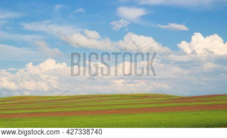 Picturesque Summer Landscape With Green Field, Plowed Land And Fluffy Cumulus Clouds
