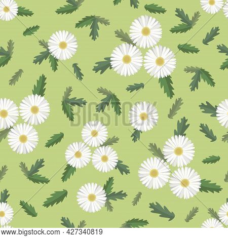 Seamless Pattern Of Daisies And Leaves. Vector Illustration