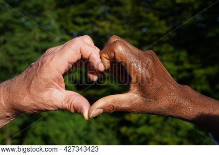 Multiracial Hand Heart In Sunlight With Green Leaf Background. Symbol For Love, Anti Racism, Accepta