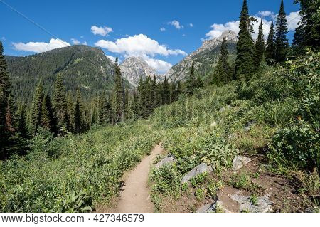 Dirt Trail Leading Into The Mountains. Taken On The Taggart Lake Trail In Grand Teton National Park