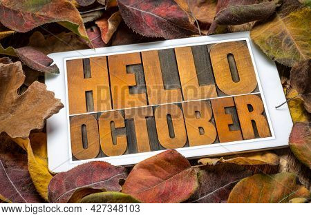 Hello October - word abstract in vintage letterpress wood type blocks on a screen of a digital tablet against dried leaves