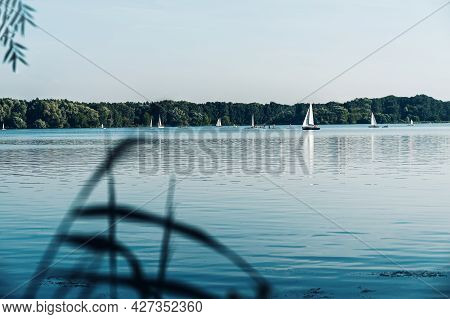 White Sailing Yachts With Sail On Mast Floating On Lake, River, Green Forest Trees On Shore, Sunny S