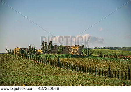 Tuscany, Italy - May 13, 2013. View Of Vineyards And Hill With Villa At The Top, In The Tuscan Count
