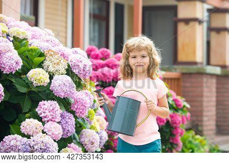 Kid Boy Watering Plants In The Garden At Summer Sunny Day. Watering Flowers In Garden. Children Farm