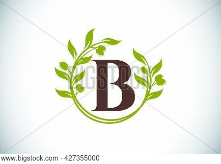 Initial Letter B Sign Symbol With Olive Branch Wreath. Round Floral Frame Made By The Olive Branch.