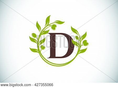 Initial Letter D Sign Symbol With Olive Branch Wreath. Round Floral Frame Made By The Olive Branch.