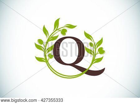 Q.eps
