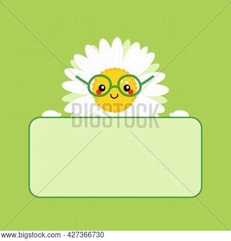 Camomile, Daisy Flower Character In Glasses Holding In Hands Blank Card, Banner For Nature Design.