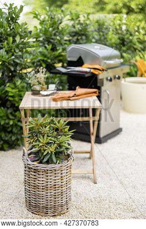 Beautiful Backyard With Barbeque Area And Dining Table