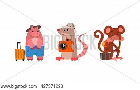 Funny Animals Traveling On Vacation Set, Amusing Monkey, Rat, Hippo Having Summer Trip And Taking Pi
