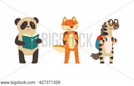 Amusing Animals Learning And Reading Books Set, Panda Bear, Fox And Zebra With Backpacks, School Edu