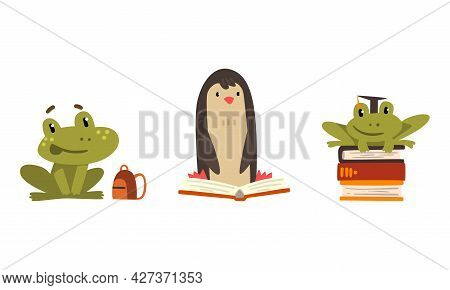 Amusing Animals Learning Set, Frog And Penguin Reading Books, School Education Concept Cartoon Vecto