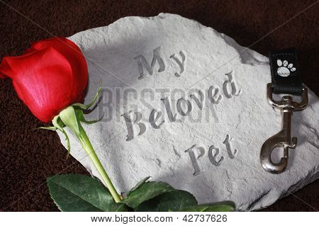 A concrete stone helps to remember a pet that has died.