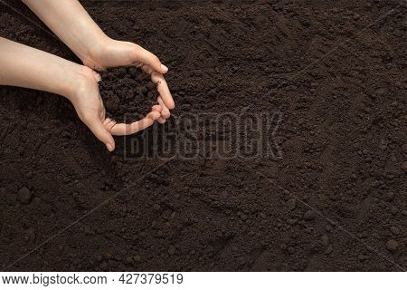 Soil In Female Hands, Land Cultivation, Farming, Spring Gardening, Caring For Nature