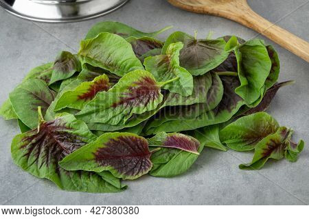Fresh raw edible amaranth leaves close up ready for cooking