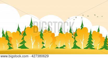 Golden Autumn In The Forest. Rural Landscape. Yellow Trees, Green Spruce. Flock Of Birds. Cartoon Ve