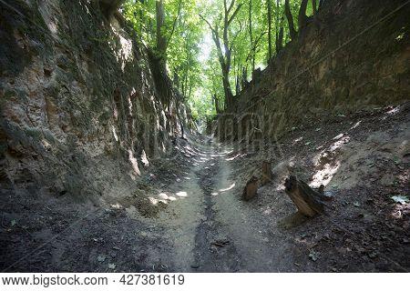 Ravine Of Saint Queen Jadwiga In Sandomierz In Poland