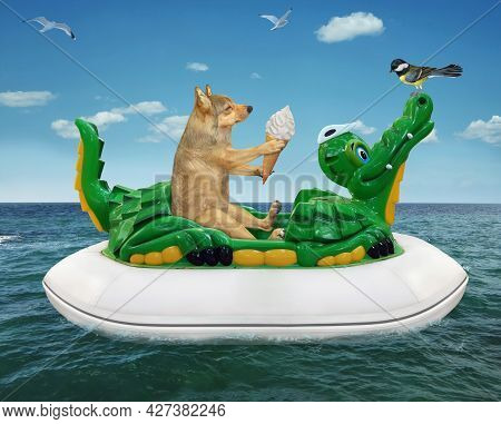 A Beige Dog In A Red Hat With Ice Cream Is Floating On An Inflatable Crocodile In The Sea At A Resor