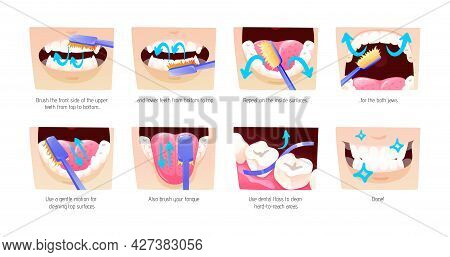 Step-by-step Scheme, Instructions On How To Brush Your Teeth Properly. Infographics Toothbrush, Toot