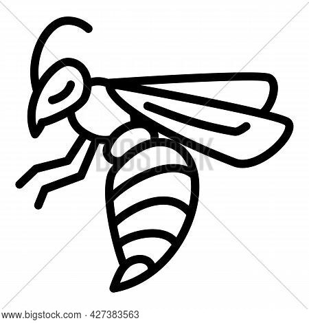 Wasp Insect Icon. Outline Wasp Insect Vector Icon For Web Design Isolated On White Background