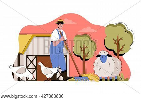 Animal Husbandry Concept. Farmer Breeds Chickens And Sheep, Works On Farm Situation. Livestock Busin